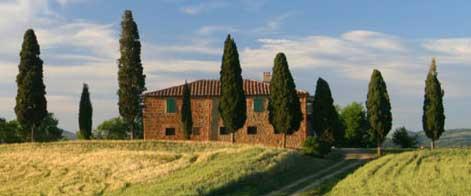 Olearia Vinicola Orsogna